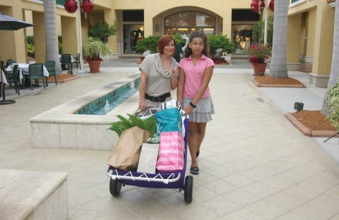 Shopping is More Fun With A Utilacart Shopping Cart